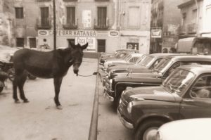 burro aparcado