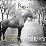 Ragel. Madrid interrumpido