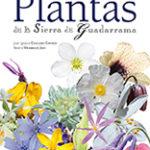 Plantas sierraGUADARRAMATRZ