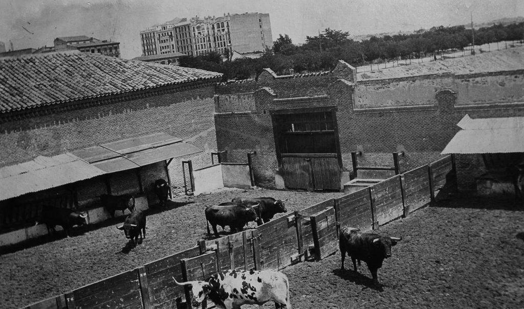 Toros en Plaza de Goya