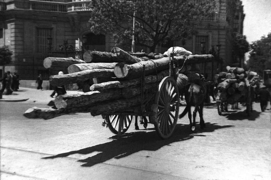 La foto de la semana: Carros con madera por Cibeles