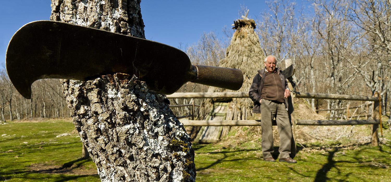 Sierra de Guadarrama, viejos oficios para la memoria