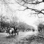 La foto de la semana: Paseo del Prado (1916)
